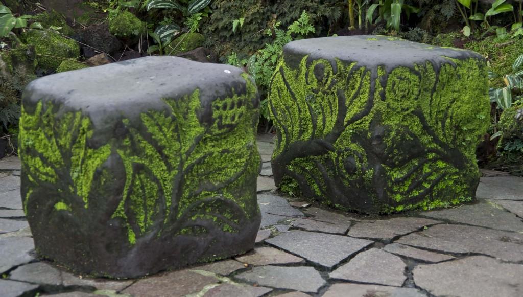 Mosegrodde sittesteiner fra Singapore Botanical Garden