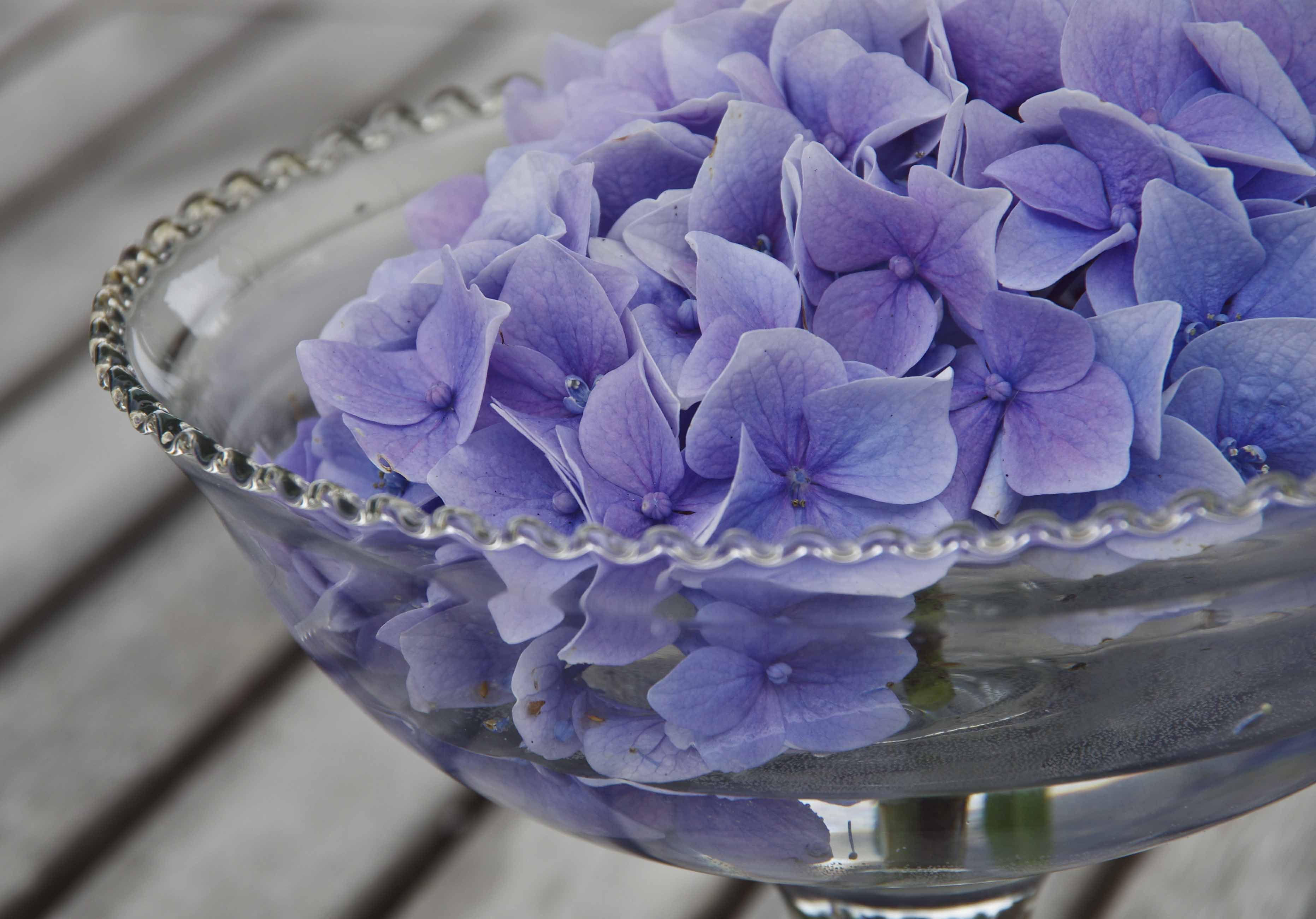 blomsterivase20_