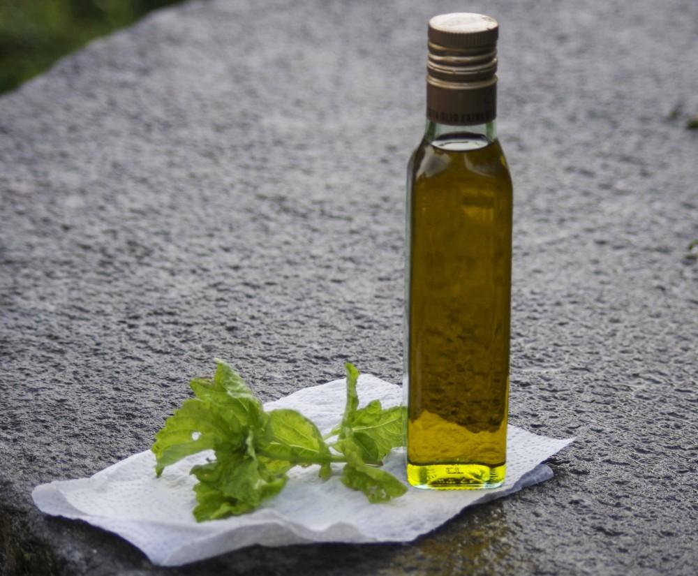 Olivenolje og en grein med basilikum. Oliveoil and some basil.
