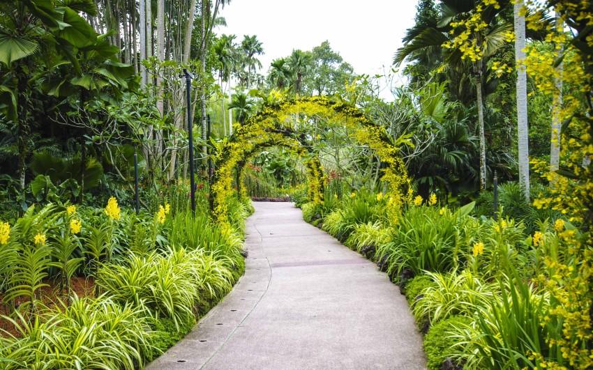 Gule eller røde blomster er spesielt  viktige for å skape en harmonisk balanse. Bildet tatt i Singapore Botanical Garden.