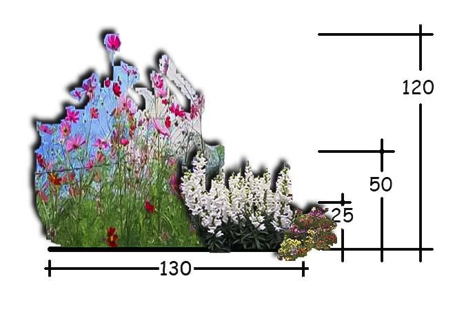 ettarig planteforslag20_