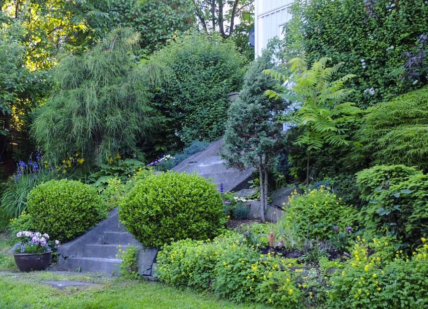 Det er ikke mye arbeide med dette. Det meste på bildet er saktevoksende, og du kan sette noen sommerplanter imellom buskene om du vil.