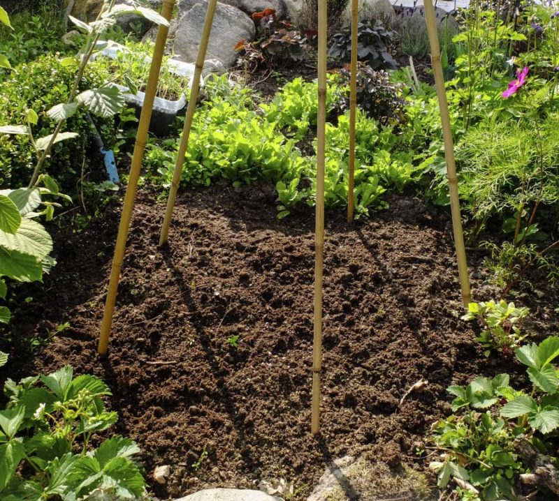 Planter for liten hage25_