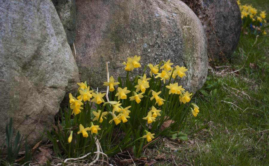 April i hagen_27_