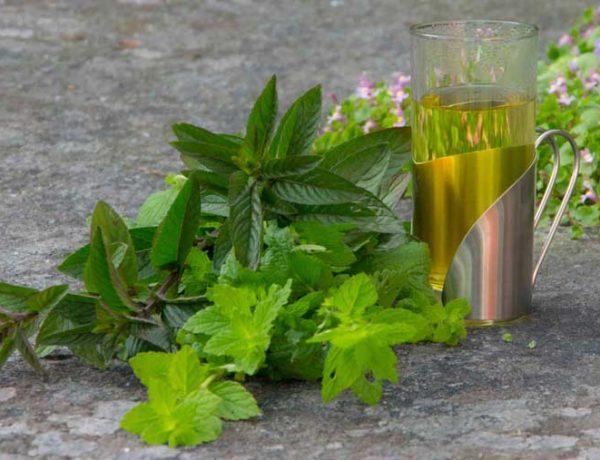 Herb tea_