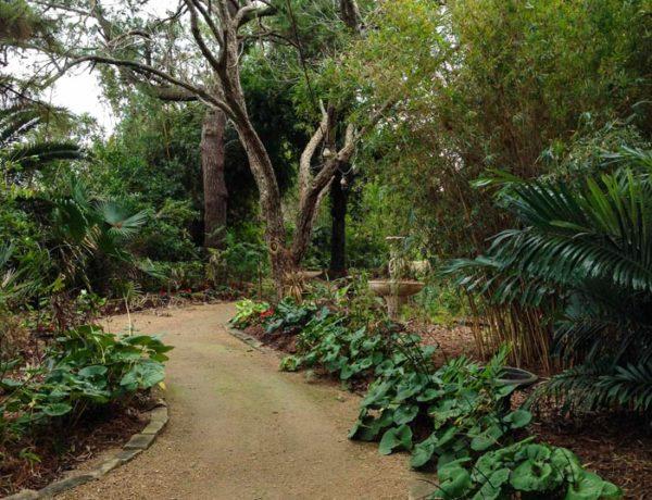 Garden treasure3_