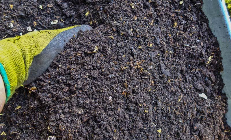 Ferdig siktet kompost fra hagen vår på hytta på Orust i Sverige. Ganske fin!_