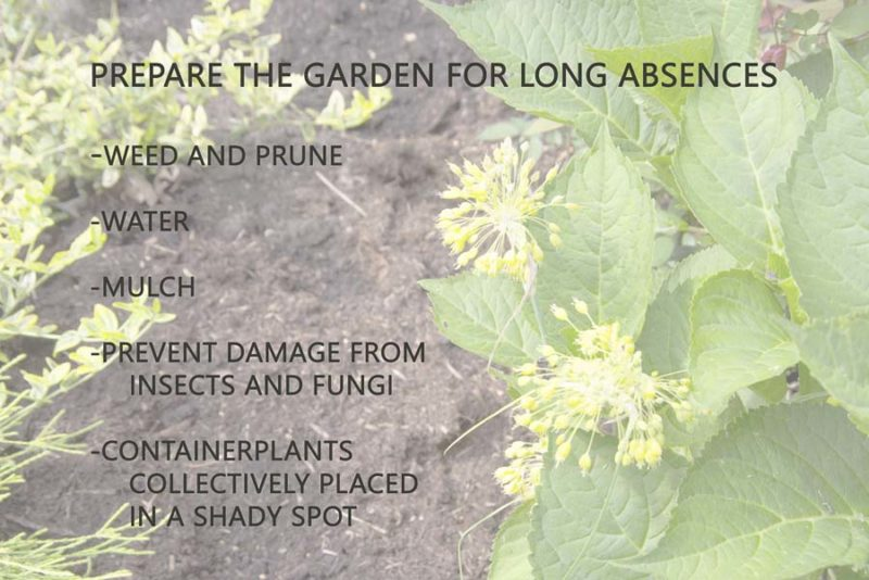 Prepare the garden_