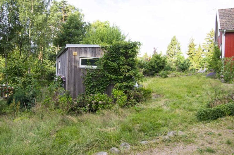 Overgrown friggebod_